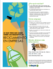 Business Recycling Flyer in Spanish