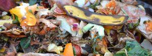 Compost SB 1383