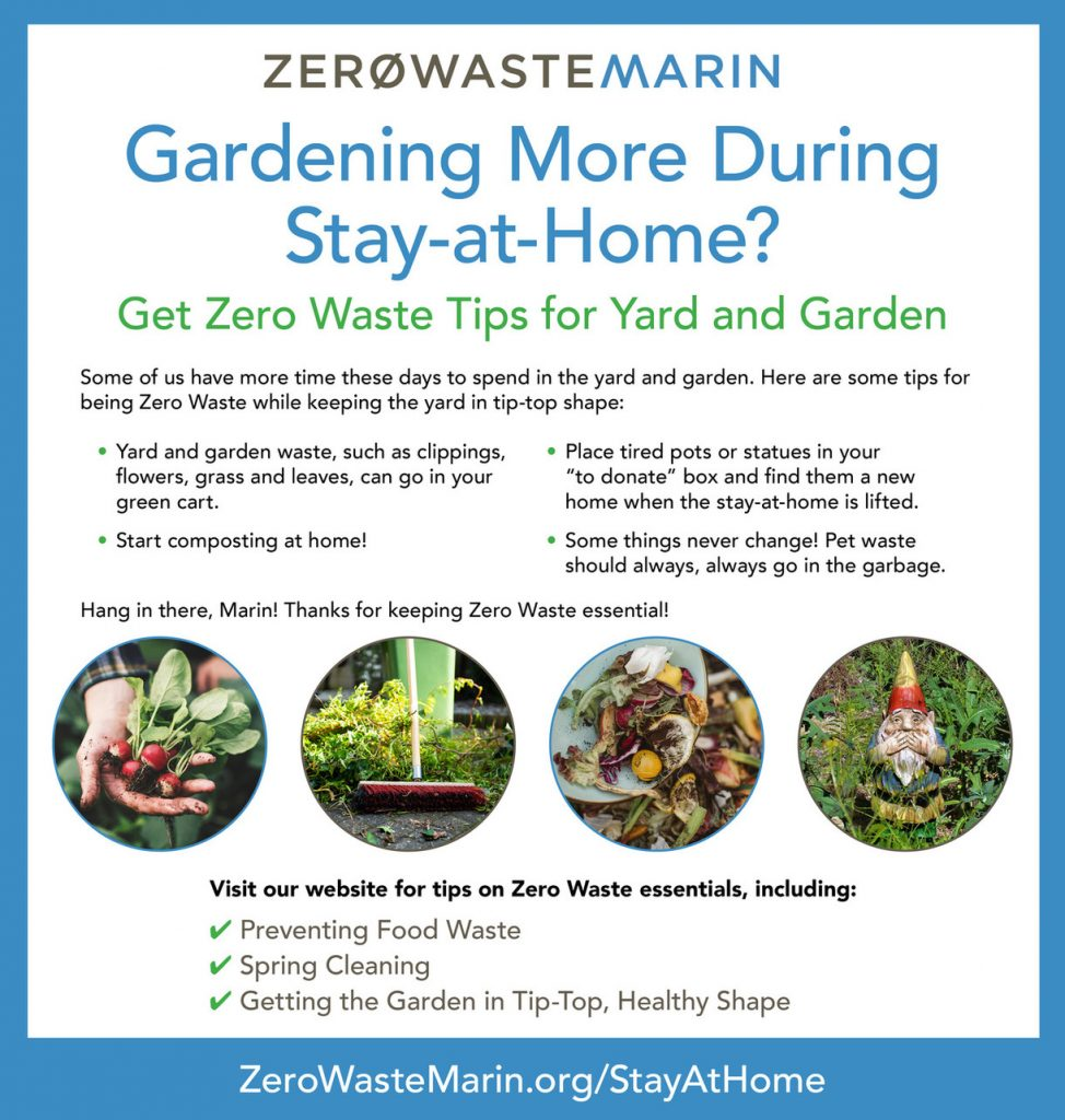 Gardening More During Stay-at-Home