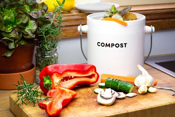 Ways to Cut Down Food Waste